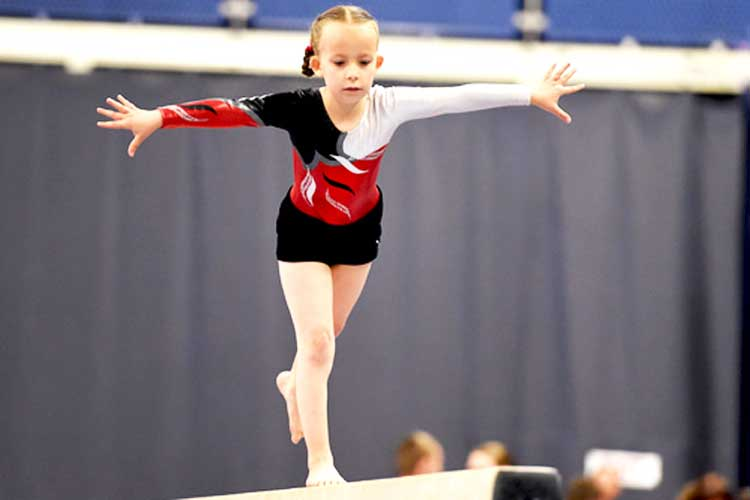 Important changes made to the Disability Gymnastics Committee