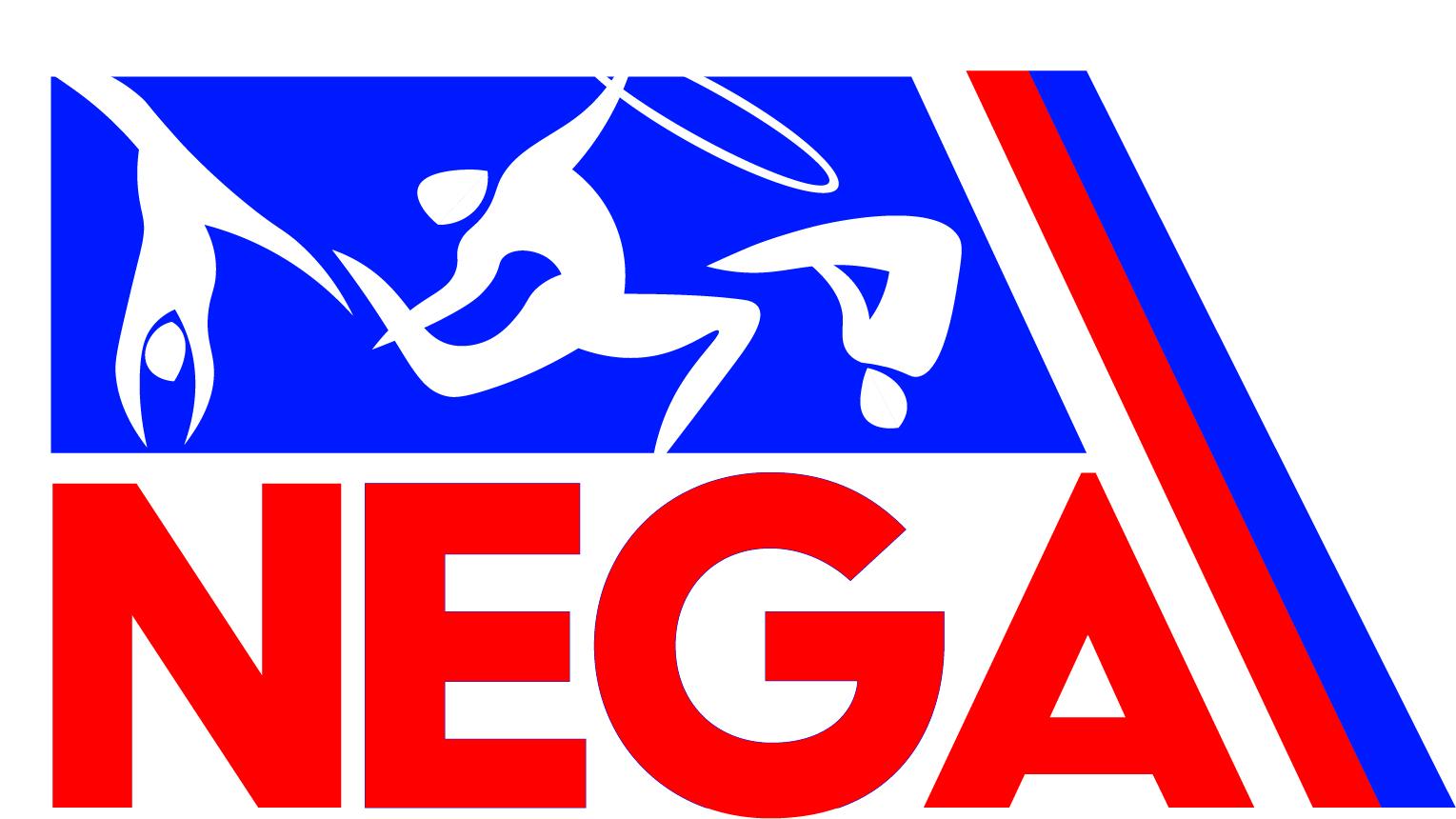 north regional logo1 3